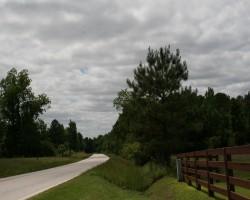+/– 38 Acres located on Sandhill Road